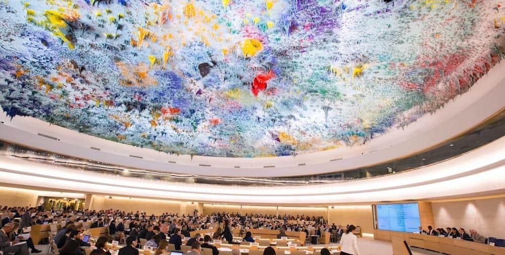 Sistema universal de protección ONU ddhh